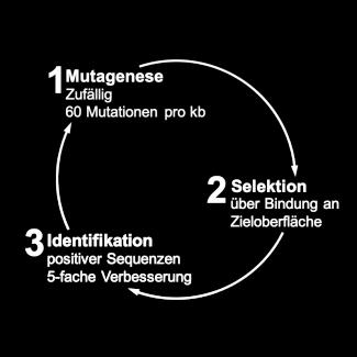 KnowVolution